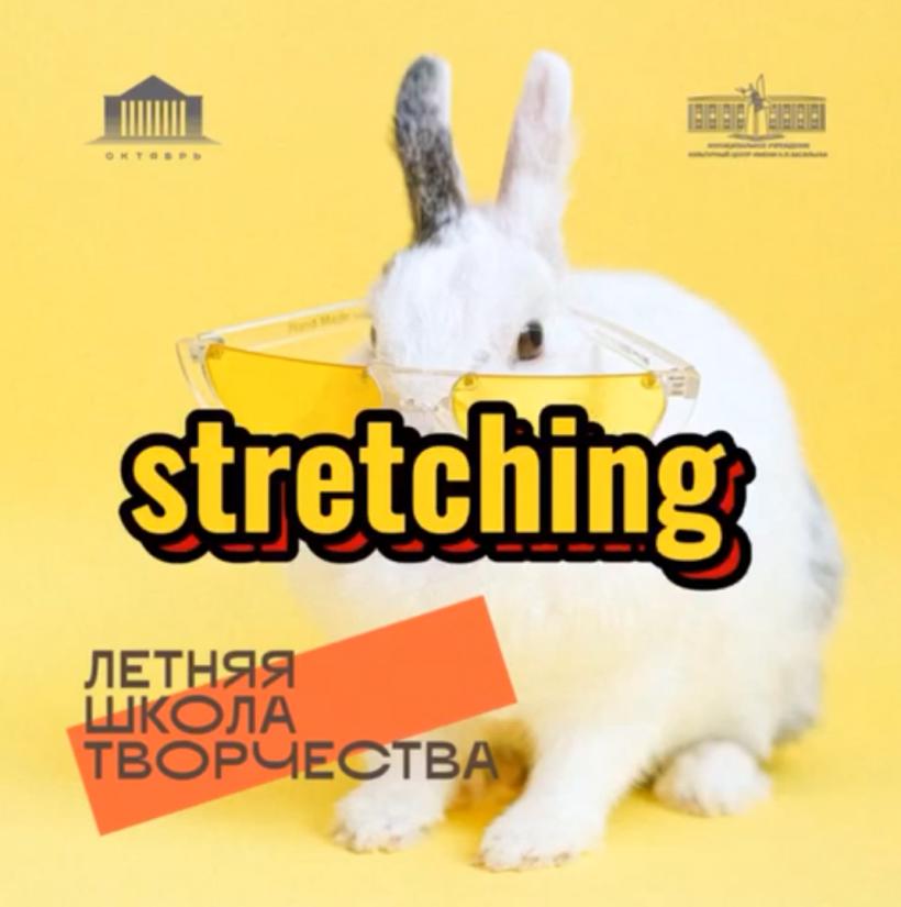 В Электростали состоится мастер-класс по stretching