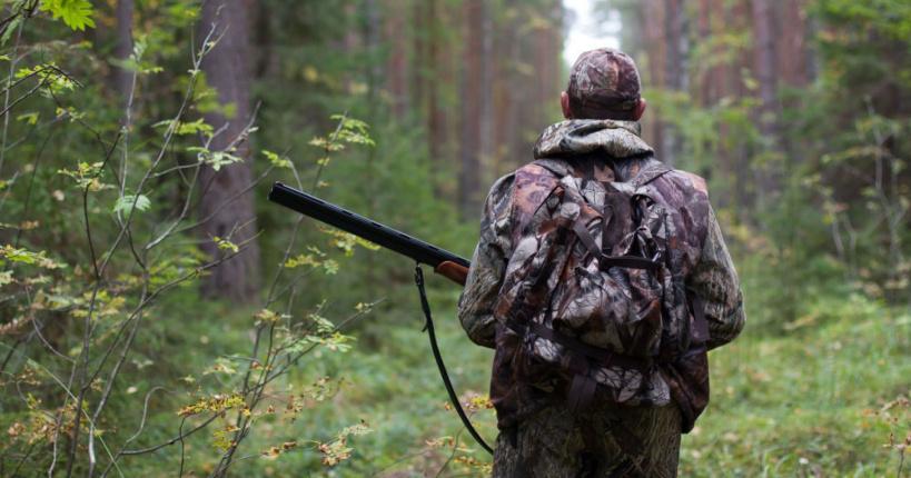 Минэкологии: за незаконную охоту поданы иски на сумму более миллиона рублей